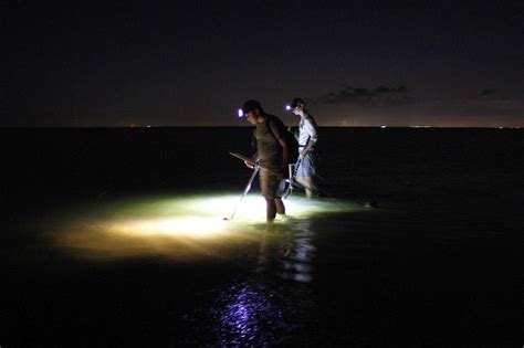 nighttime flounder gigging