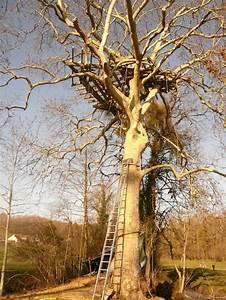 Cabane Dans Les Arbres Construction : blog cabanes cabane dans les arbres en normandie ~ Mglfilm.com Idées de Décoration