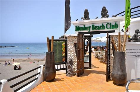 Monkey Beach Club in Tenerife   My Destination Tenerife