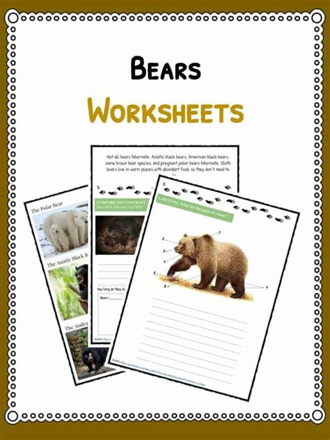 grizzly bear facts information worksheets  kids