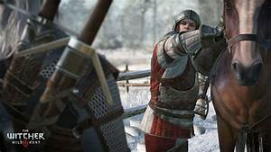 The Witcher 3 Wild Hunt 2015 PC Torrents Games