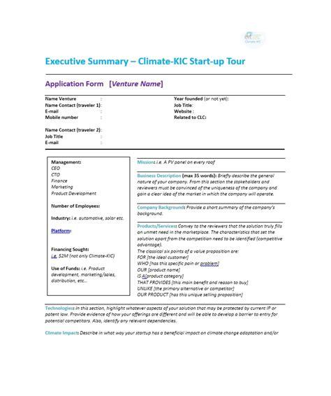 perfect executive summary examples templates