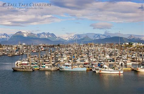 Fishing Charters Boat Harbor by Homer Boat Harbor Picture Of Tall Tale Charters