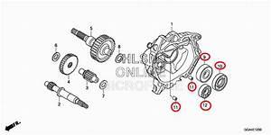 Genuine Oem Honda Nps50  S Ruckus Engine Rebuild Kit 2003