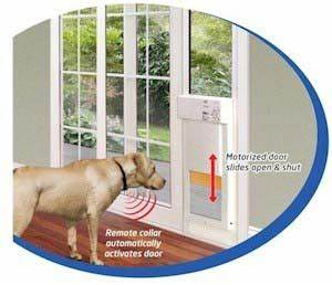 power pet large automatic sldng glass pet door high tech With airtight dog door