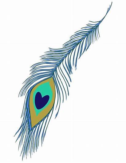 Peacock Feather Clipart Clip Domain Cliparts Clipartix