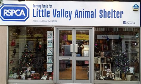 exeter sidwell street  valley animal shelter