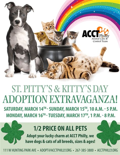 Acct Philly March  Ee  Adoption Ee   Promotions And Events Cnbnews