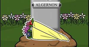 themes of flowers for algernon short story themes of flowers for algernon short story themes of flowers for algernon short story