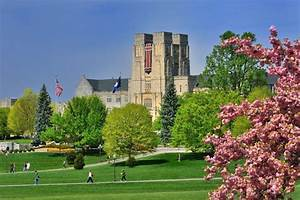 Virginia Tech named Tree Campus USA for fourth consecutive ...