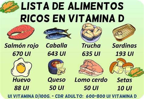 alimentos ricos en vit d 164 best salud images on colleges