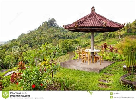 balinese garden royalty free stock photos image 3904868