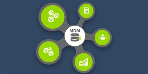 master data management cleansing  standarization services