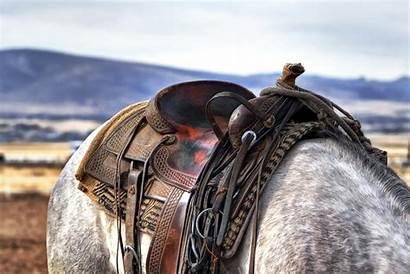Saddle Western Horse Cowboys Horses Background Country