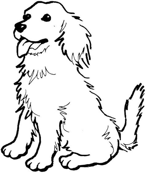 coloring page   golden retriever photo happy dog heaven