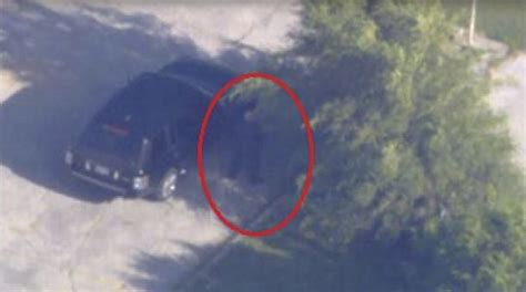 surveillance rob ford  urinating  public