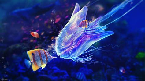 Underwater 1080p Wallpaper