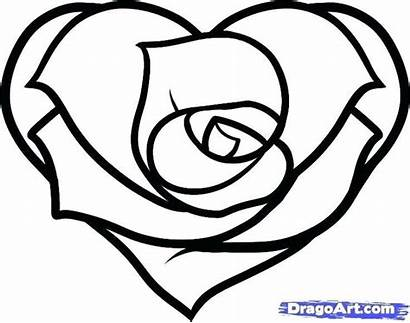 Roses Heart Rose Coloring Hearts Draw Step