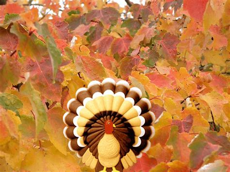 Animated Thanksgiving Wallpaper Backgrounds - free thanksgiving backgrounds wallpaper cave