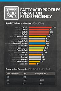 The Fatty Acid Forum  U00bb Quick Guide To Feed Efficiency