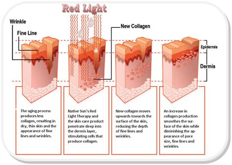 red light therapy benefits health and wellness of carmel red light therapy