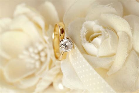 Wedding Flower Background ·①. Teak Rings. Worn Wedding Rings. Tolbert Wedding Rings. 2ct Diamond Rings. Celebrity Rings. Prince William Engagement Rings. Stacked Gold Wedding Rings. Avocado Engagement Rings