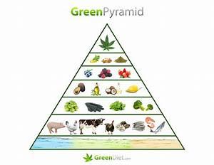 The Green Food Pyramid