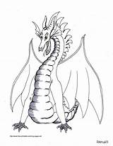 Dragon Coloring Printable Pages Animal Sheets Colour Adult Realistic sketch template
