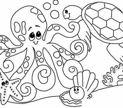 Coloring Sea Pages Seashell Under Printable Adults