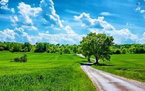 Beautiful Summer Day HD Wallpaper