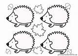 Hedgehog Coloring Pages Kindergarten Line Drawing Preschool Getdrawings sketch template