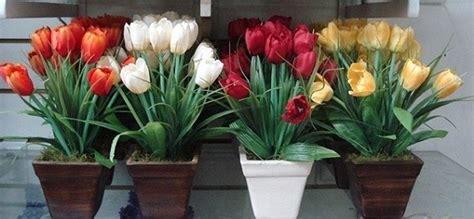 piantare bulbi tulipani in vaso piantare bulbi tulipani bulbi piantare bulbi di tulipani