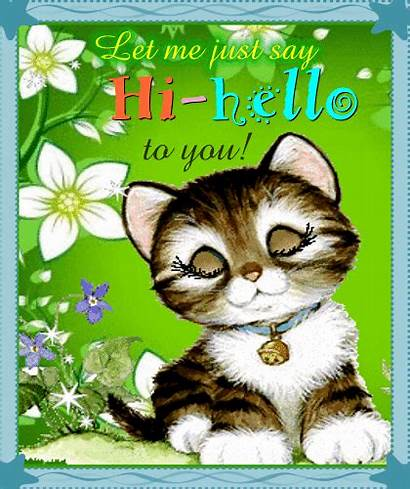 Hello Hi Kitty Say Greetings Pets Wants