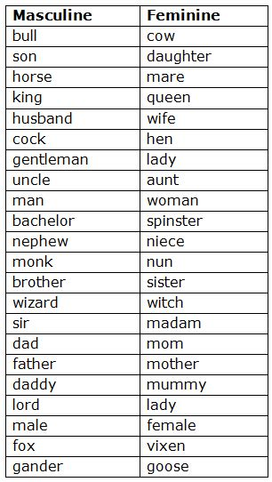 english class  topic noun gender