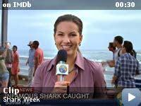 shark week  video gallery