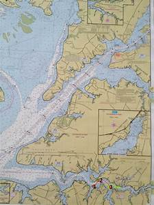 Upper Chesapeake Bay Chart Seabiscuit Really Cool Dolphin Video And Superstorm