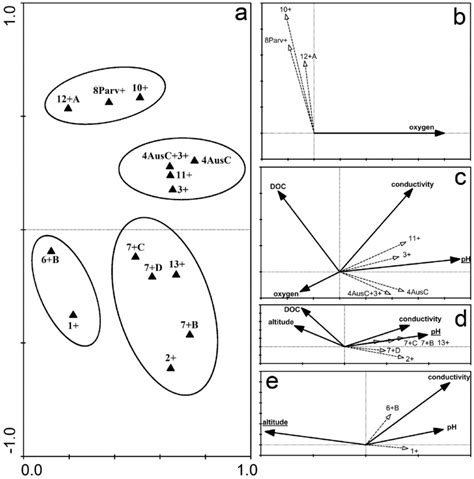 occurrence probe clusters defined similarity groups publication