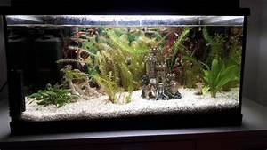 Aquarium Kies Kaufen : aquarium kies neu und gebraucht kaufen bei ~ Orissabook.com Haus und Dekorationen