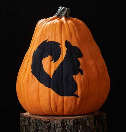 squirrel pumpkin carving patterns free printable woodland pumpkin stencils midwest living