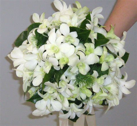 white singapore orchid google search floral wreath