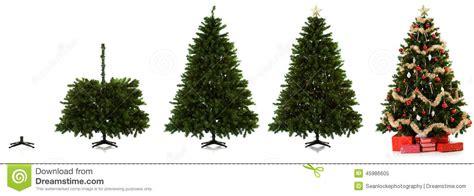 how to set up a christmas tree lizardmedia co