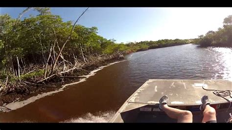 Everglades Airboat Tour Captain Doug by Captain Doug S Airboat Ride Everglades City Fl 1 3 13