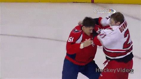 fight nhl gif find share  giphy