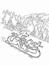 Animals Sleigh Coloring Sled Ride Printable Coloringpagesbymradron Adron Mr Kid sketch template