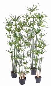 Plante D Extérieur En Pot : plante artificielle papyrus alternifolius en pot int rieur h 100 cm vert ~ Teatrodelosmanantiales.com Idées de Décoration