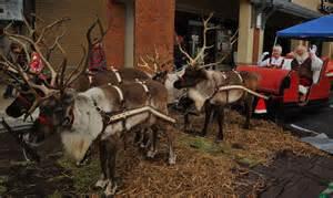 Santa Reindeer Live