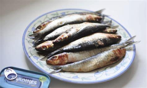 sardine cuisine simple food how to gut clean and bone a sardine