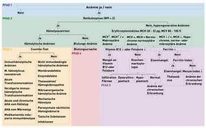 Mikronährstoffe Berechnen : pfade der an miediagnostik imd institut f r medizinische ~ Themetempest.com Abrechnung