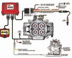 Msd Atomic Efi Wiring Diagram