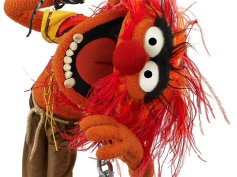 animal  muppets hd wallpapers